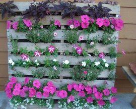 Вертикальные поддоны с цветами